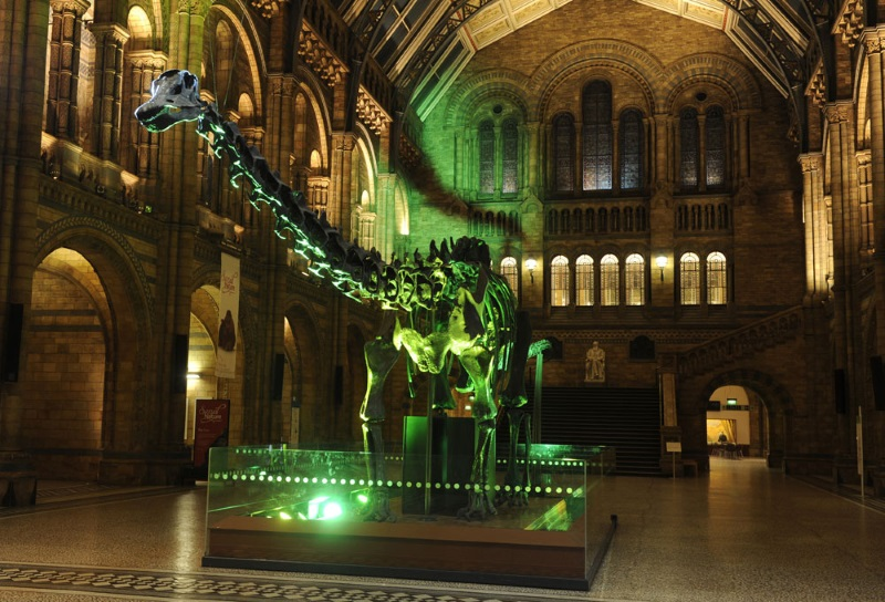 Natural History Museum, Londen